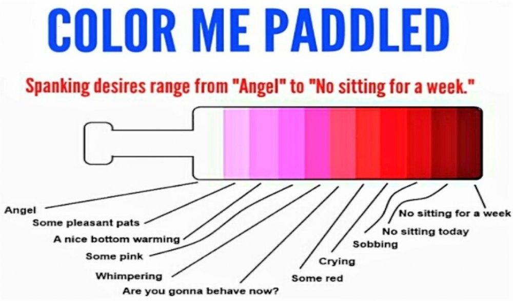 Corlor Paddle.jpg